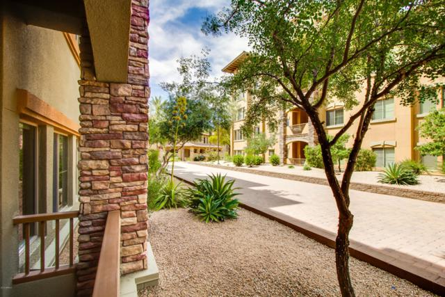 5350 E Deer Valley Drive #1250, Phoenix, AZ 85054 (MLS #5908967) :: The Everest Team at My Home Group