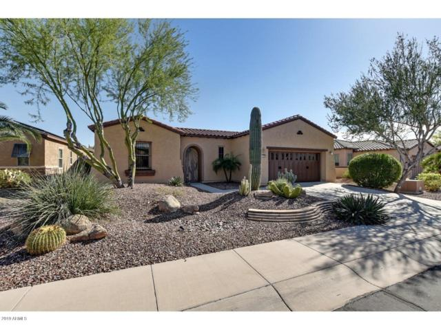 12789 W Jasmine Trail, Peoria, AZ 85383 (MLS #5908987) :: Yost Realty Group at RE/MAX Casa Grande