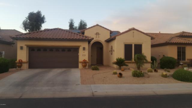 15712 W Roanoke Avenue, Goodyear, AZ 85395 (MLS #5908990) :: Yost Realty Group at RE/MAX Casa Grande