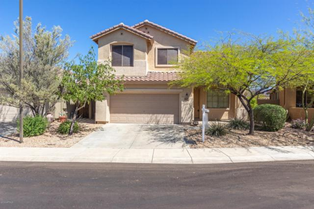 1712 W Twain Court, Anthem, AZ 85086 (MLS #5909017) :: Yost Realty Group at RE/MAX Casa Grande