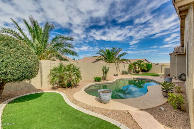 10130 S 185TH Drive, Goodyear, AZ 85338 (MLS #5909021) :: Lucido Agency