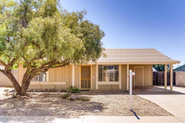1529 W Comstock Drive, Chandler, AZ 85224 (MLS #5909069) :: Yost Realty Group at RE/MAX Casa Grande