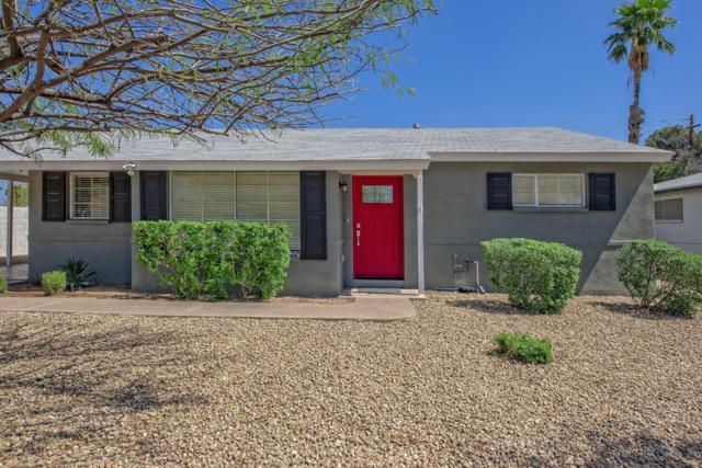 5207 N 11th Avenue, Phoenix, AZ 85013 (MLS #5909095) :: Yost Realty Group at RE/MAX Casa Grande