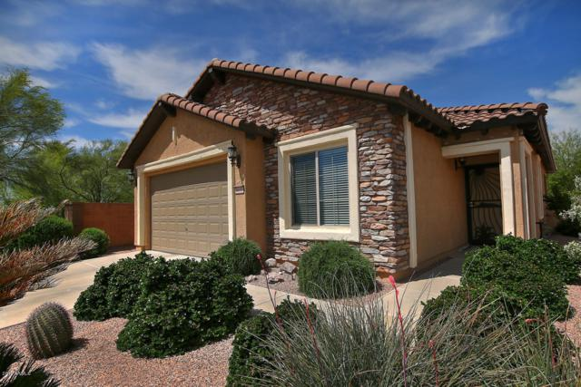 6630 W Yorktown Court, Florence, AZ 85132 (MLS #5909108) :: Lux Home Group at  Keller Williams Realty Phoenix