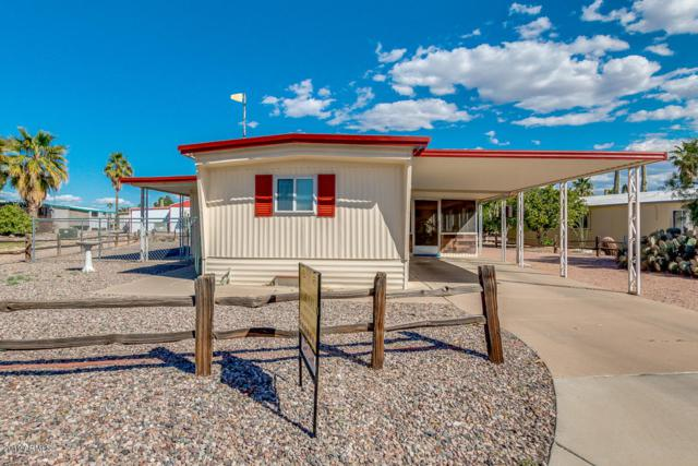 3611 N North Dakota Avenue, Florence, AZ 85132 (MLS #5909142) :: The W Group
