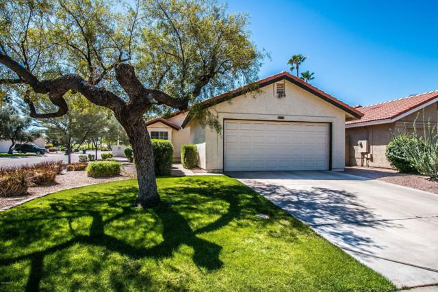 2275 W Gail Drive, Chandler, AZ 85224 (MLS #5909155) :: CC & Co. Real Estate Team