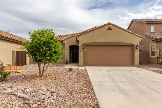 715 E Blossom Road, San Tan Valley, AZ 85143 (MLS #5909174) :: RE/MAX Excalibur