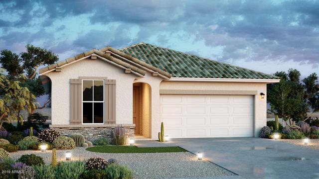 23126 N 126th Lane, Sun City West, AZ 85375 (MLS #5909201) :: Scott Gaertner Group