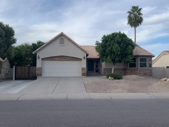 6728 W Piute Avenue, Glendale, AZ 85308 (MLS #5909220) :: Cindy & Co at My Home Group