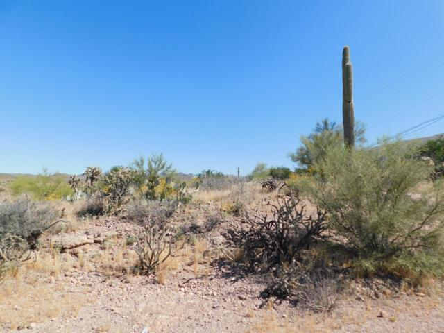 1180 N Queen Mary Way, Queen Valley, AZ 85118 (MLS #5909260) :: RE/MAX Desert Showcase