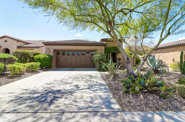 12483 W Oberlin Way, Peoria, AZ 85383 (MLS #5909315) :: Yost Realty Group at RE/MAX Casa Grande