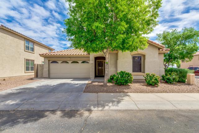 16121 N 170TH Avenue, Surprise, AZ 85388 (MLS #5909318) :: Occasio Realty