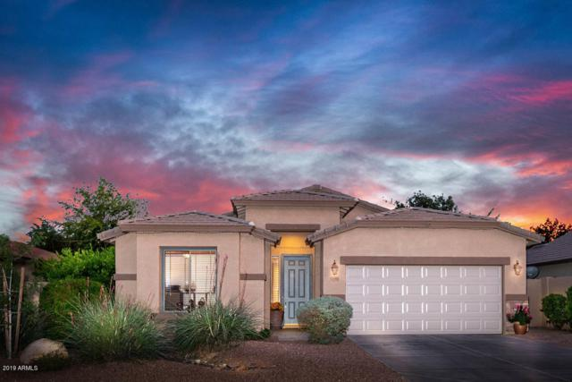 3391 E Meadowview Court, Gilbert, AZ 85298 (MLS #5909322) :: Kortright Group - West USA Realty