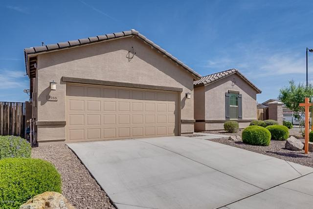 1988 W Briana Way, Queen Creek, AZ 85142 (MLS #5909367) :: Revelation Real Estate
