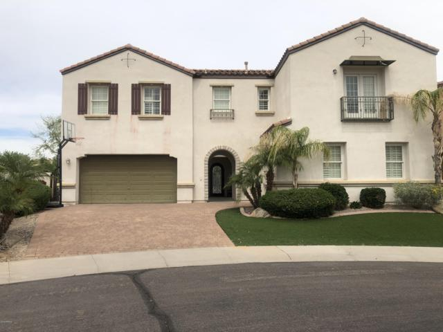 18444 W Purdue Avenue, Waddell, AZ 85355 (MLS #5909386) :: Yost Realty Group at RE/MAX Casa Grande