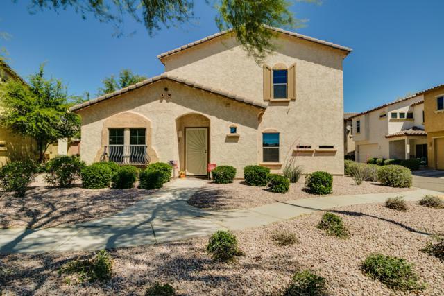 17696 W Langer Lane, Surprise, AZ 85388 (MLS #5909431) :: Yost Realty Group at RE/MAX Casa Grande