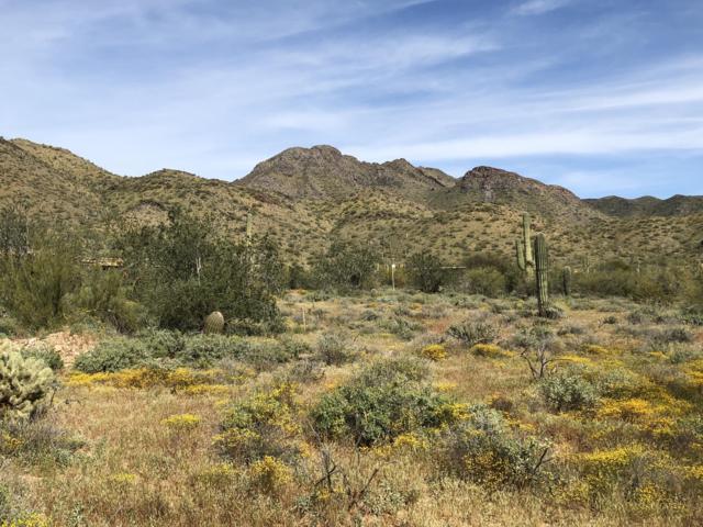 10500 E Lost Canyon Drive, Scottsdale, AZ 85255 (MLS #5909498) :: Yost Realty Group at RE/MAX Casa Grande