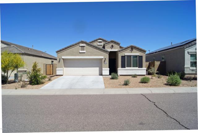 30204 W Catalina Drive, Buckeye, AZ 85396 (MLS #5909510) :: Yost Realty Group at RE/MAX Casa Grande