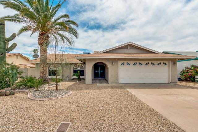 5809 W Libby Street, Glendale, AZ 85308 (MLS #5909565) :: CC & Co. Real Estate Team