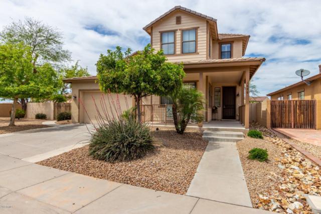 1498 W Homestead Court, Chandler, AZ 85286 (MLS #5909574) :: Arizona 1 Real Estate Team