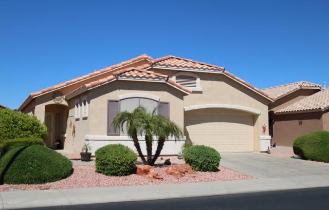 17804 N Phoenician Drive, Surprise, AZ 85374 (MLS #5909578) :: Yost Realty Group at RE/MAX Casa Grande