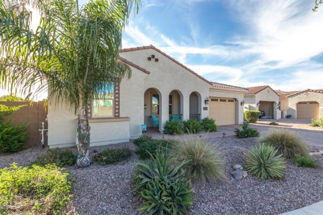 21886 S 220TH Place, Queen Creek, AZ 85142 (MLS #5909596) :: Yost Realty Group at RE/MAX Casa Grande