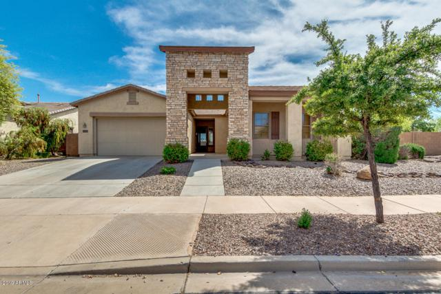 21689 S 187TH Way, Queen Creek, AZ 85142 (MLS #5909599) :: Yost Realty Group at RE/MAX Casa Grande