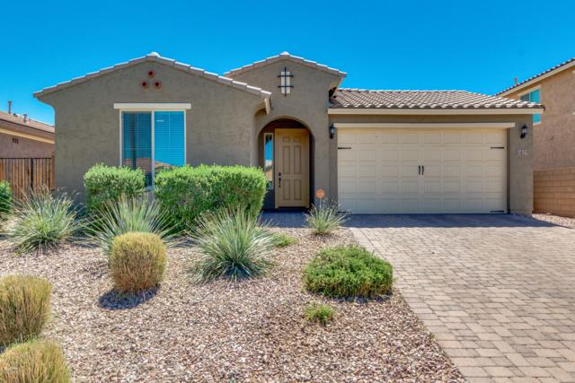 2429 E Stacey Road, Gilbert, AZ 85298 (MLS #5909605) :: Arizona 1 Real Estate Team