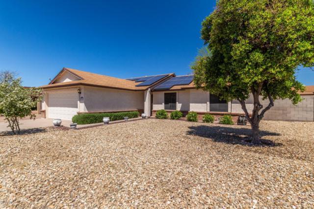 8914 W Echo Lane, Peoria, AZ 85345 (MLS #5909608) :: Yost Realty Group at RE/MAX Casa Grande