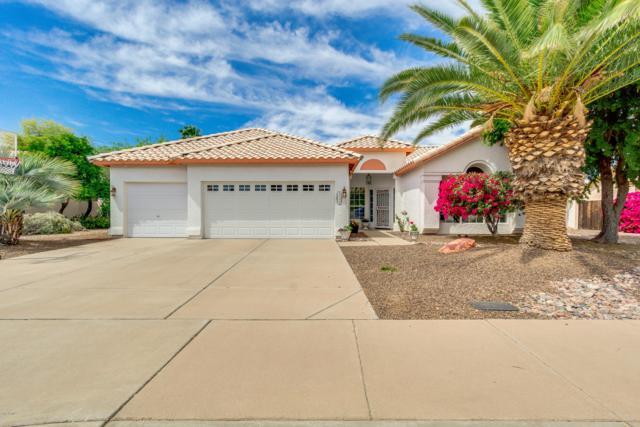 3112 N 64TH Street, Mesa, AZ 85215 (MLS #5909610) :: Yost Realty Group at RE/MAX Casa Grande