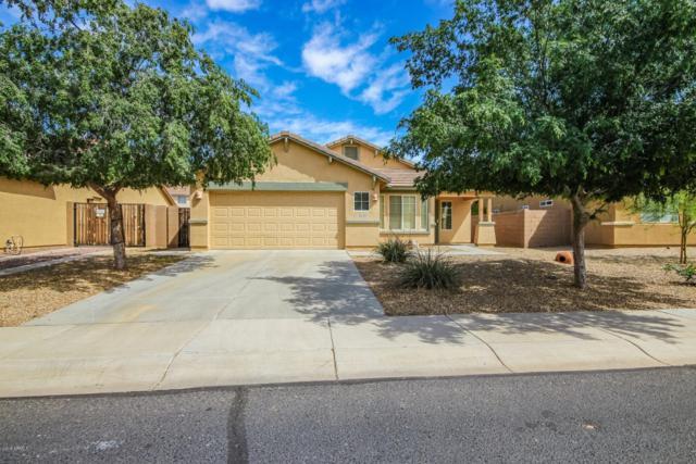 16416 W Cottonwood Street, Surprise, AZ 85388 (MLS #5909631) :: Yost Realty Group at RE/MAX Casa Grande