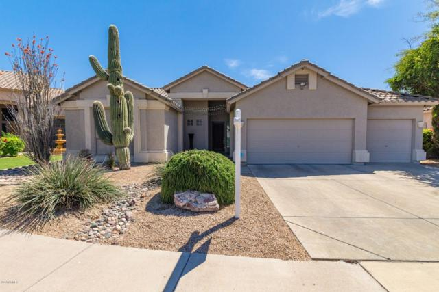6035 E Woodridge Drive, Scottsdale, AZ 85254 (MLS #5909648) :: Occasio Realty
