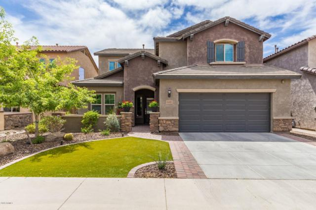 1665 W Blaylock Drive, Phoenix, AZ 85085 (MLS #5909654) :: Yost Realty Group at RE/MAX Casa Grande
