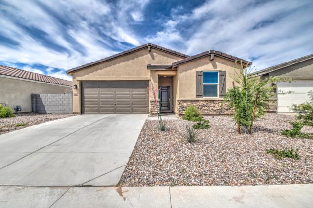402 W Tenia Trail, San Tan Valley, AZ 85140 (MLS #5909656) :: Occasio Realty