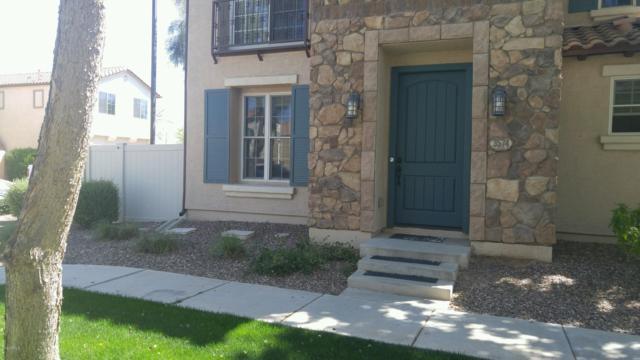 3574 S Roy Rogers Way, Gilbert, AZ 85297 (MLS #5909665) :: Yost Realty Group at RE/MAX Casa Grande