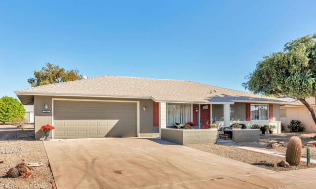 19850 N Concho Circle, Sun City, AZ 85373 (MLS #5909673) :: Yost Realty Group at RE/MAX Casa Grande