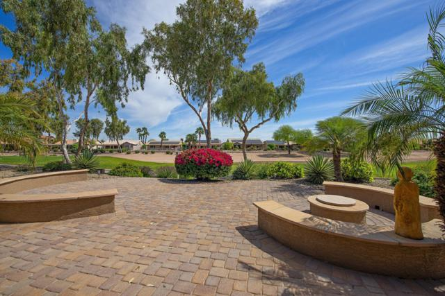 3665 N 149TH Avenue, Goodyear, AZ 85395 (MLS #5909680) :: Yost Realty Group at RE/MAX Casa Grande