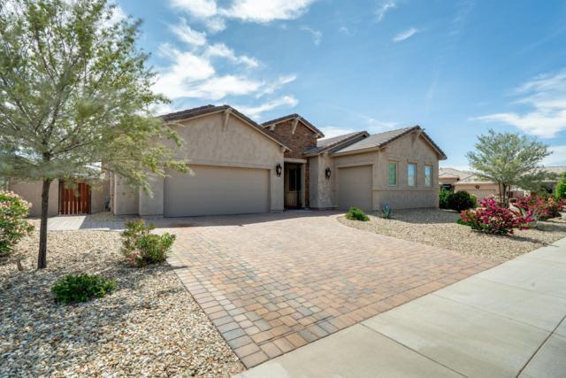 5837 W Plum Road, Phoenix, AZ 85083 (MLS #5909682) :: The Ford Team