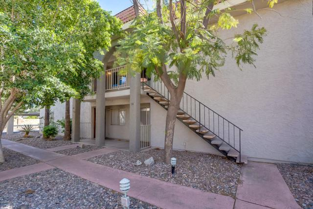 1650 N 87TH Terrace 14B, Scottsdale, AZ 85257 (MLS #5909686) :: The Everest Team at My Home Group