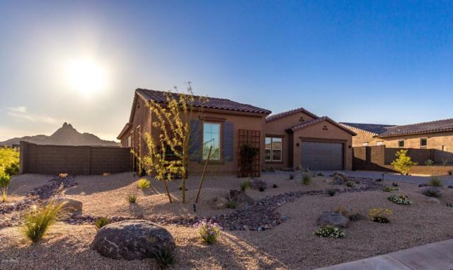 26888 N 110TH Place, Scottsdale, AZ 85262 (MLS #5909717) :: CC & Co. Real Estate Team