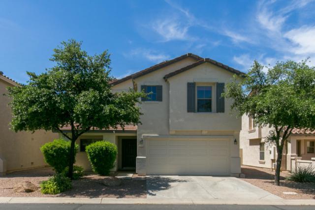 2466 S Nielson Street, Gilbert, AZ 85295 (MLS #5909748) :: Occasio Realty