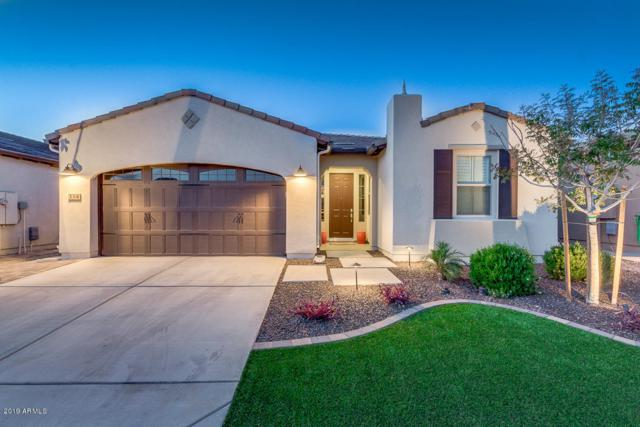 114 E Atacama Lane, San Tan Valley, AZ 85140 (MLS #5909769) :: Yost Realty Group at RE/MAX Casa Grande
