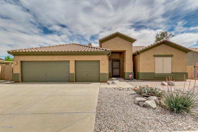 17731 W Summit Drive, Goodyear, AZ 85338 (MLS #5909780) :: Yost Realty Group at RE/MAX Casa Grande
