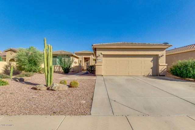 42913 W Whimsical Drive, Maricopa, AZ 85138 (MLS #5909785) :: Yost Realty Group at RE/MAX Casa Grande