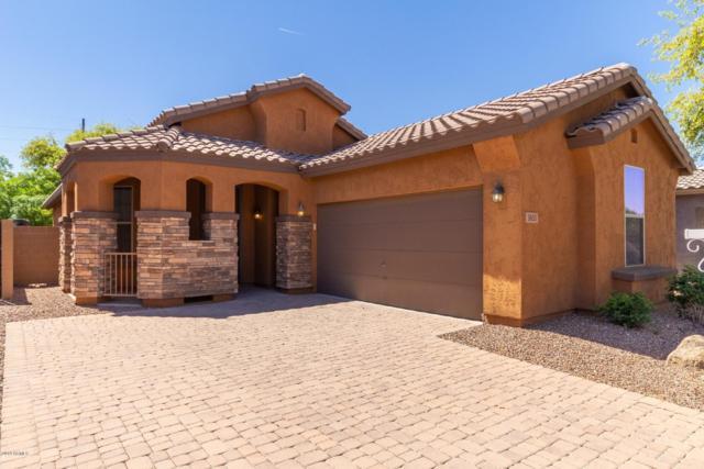 3833 E Frances Lane, Gilbert, AZ 85295 (MLS #5909786) :: Yost Realty Group at RE/MAX Casa Grande