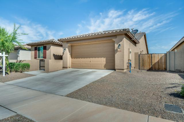 16886 W Woodlands Avenue, Goodyear, AZ 85338 (MLS #5909794) :: RE/MAX Excalibur