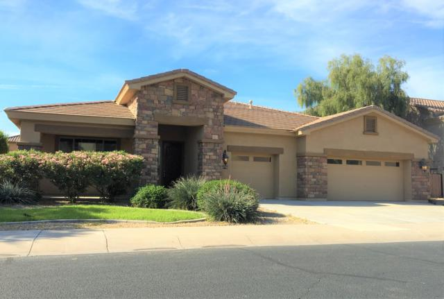 15333 W Sells Drive, Goodyear, AZ 85395 (MLS #5909810) :: Occasio Realty
