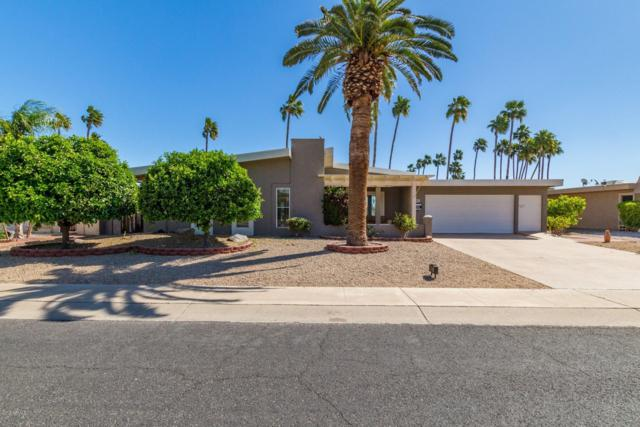 9960 W Willow Point, Sun City, AZ 85351 (MLS #5909829) :: RE/MAX Excalibur