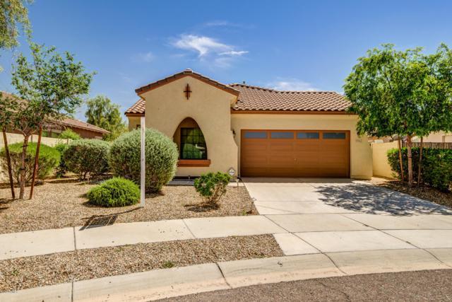 17043 W Zuni Street, Goodyear, AZ 85338 (MLS #5909831) :: Lux Home Group at  Keller Williams Realty Phoenix