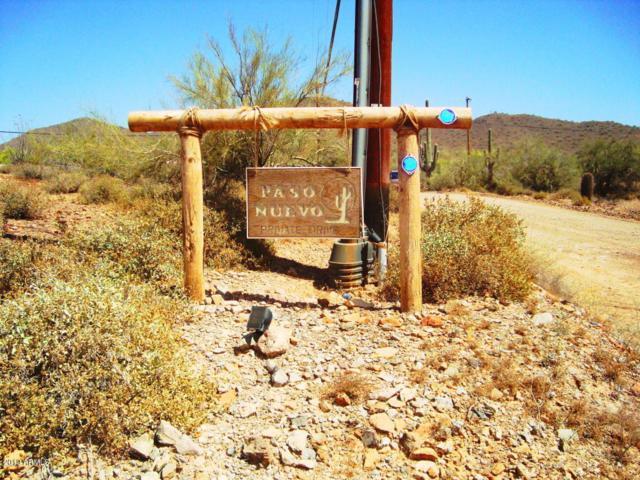 1928 E Paso Nuevo Drive, Phoenix, AZ 85086 (MLS #5909841) :: Revelation Real Estate